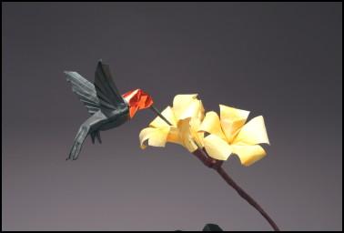 origami annas hummingbird